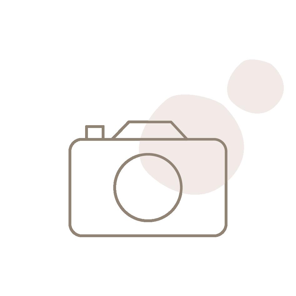 macchina fotografica stilizzata